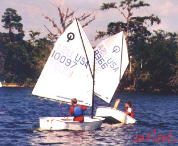youth sailing programs pcyc all basketball scores info
